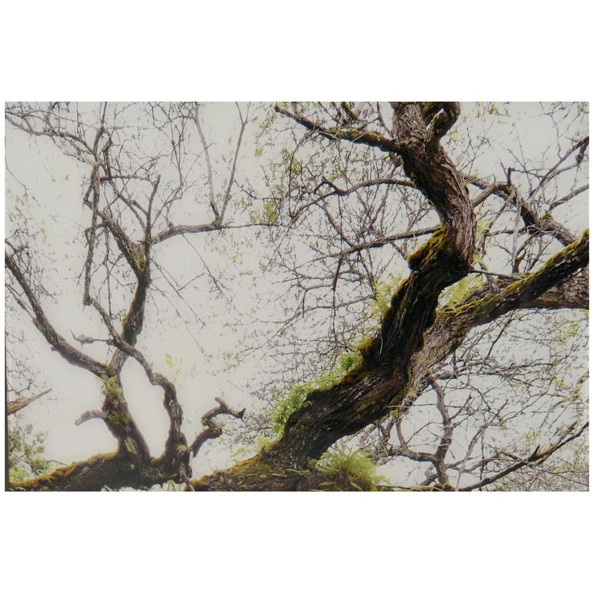 Arbre Set of 3 Acrylic Wall Art  alternate image, 4 of 4 images.