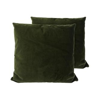 Andy Green Two Accent Pillows