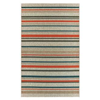 Indy 5' x 8' Indoor/Outdoor Area Rug