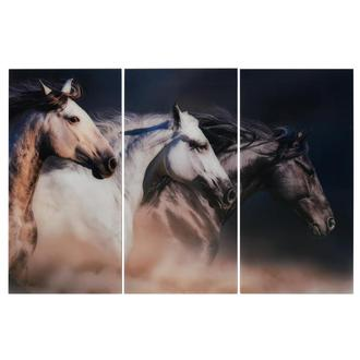 Ocala Set of 3 Acrylic Wall Art