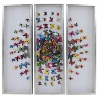 Farfalla Colorada Set of 3 Shadow Boxes